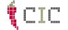 CIC Creative Internet Consulting GmbH